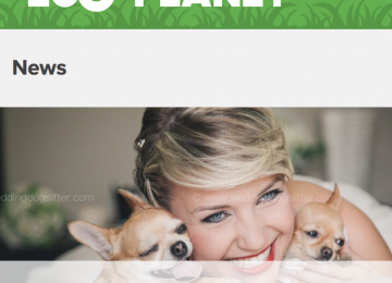 ZoOplanet & Wedding Dog Sitter